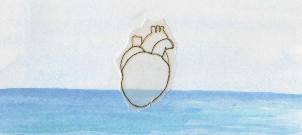 Coeur sang frontières